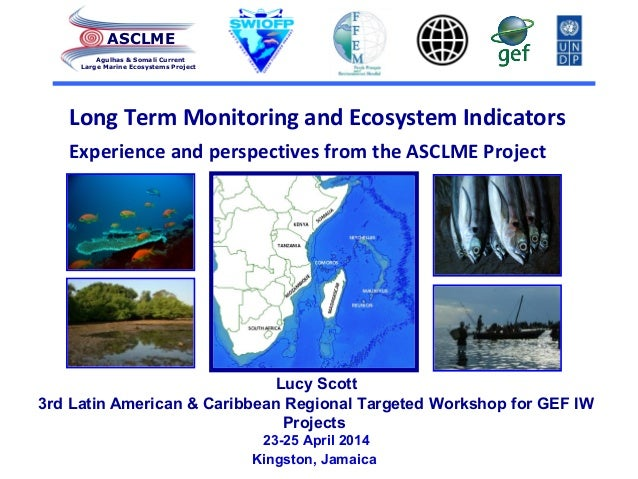 Long Term Monitoring and Ecosystem Indicators Experience and perspectives from the ASCLME Project ASCLME Agulhas & Somali ...