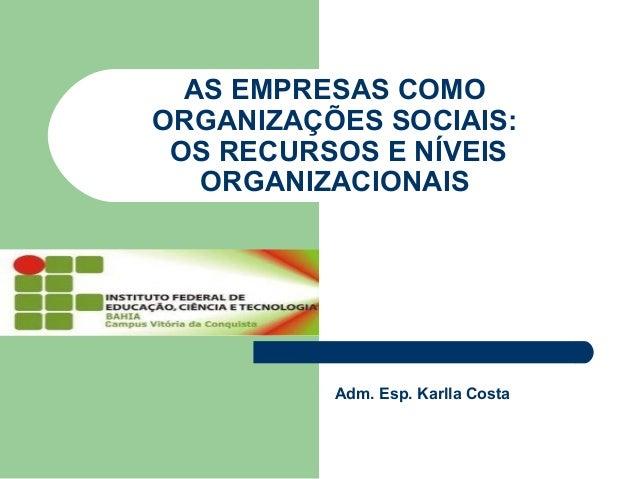 AS EMPRESAS COMO ORGANIZAÇÕES SOCIAIS: OS RECURSOS E NÍVEIS ORGANIZACIONAIS Adm. Esp. Karlla Costa
