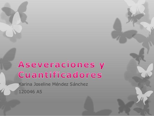 Karina Joseline Méndez Sánchez120046 A5