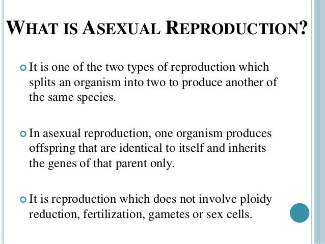 What are types of asexual reproduction and how to represent them?