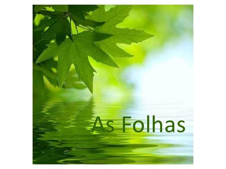 As Folhas<br />