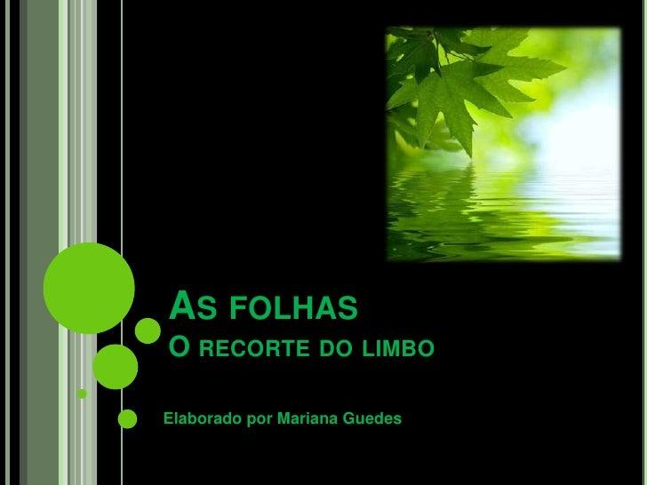 As folhasO recorte do limbo<br />Elaborado por Mariana Guedes<br />