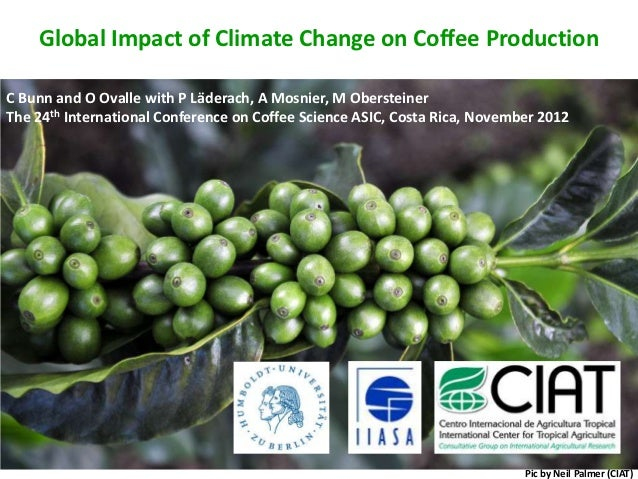 Global Impact of Climate Change on Coffee ProductionC Bunn and O Ovalle with P Läderach, A Mosnier, M ObersteinerThe 24th ...