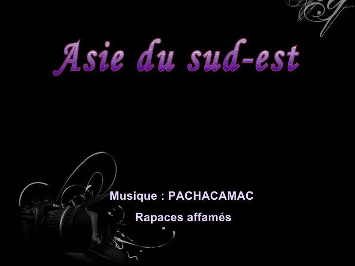 Asie du sud-est Musique : PACHACAMAC  Rapaces affamés