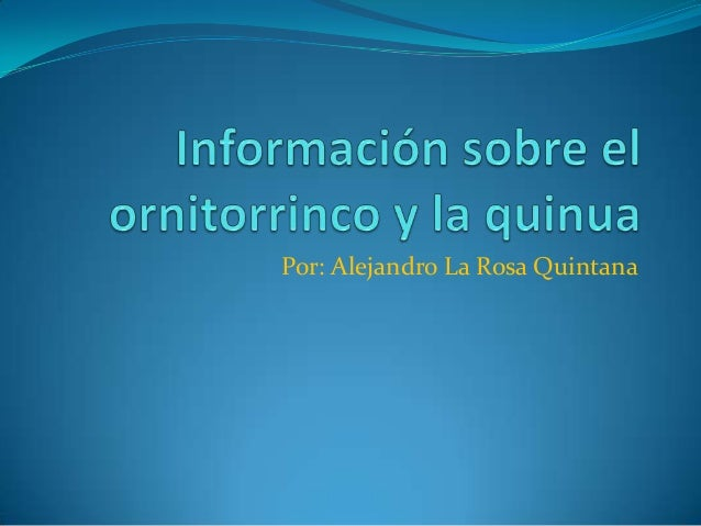 Por: Alejandro La Rosa Quintana