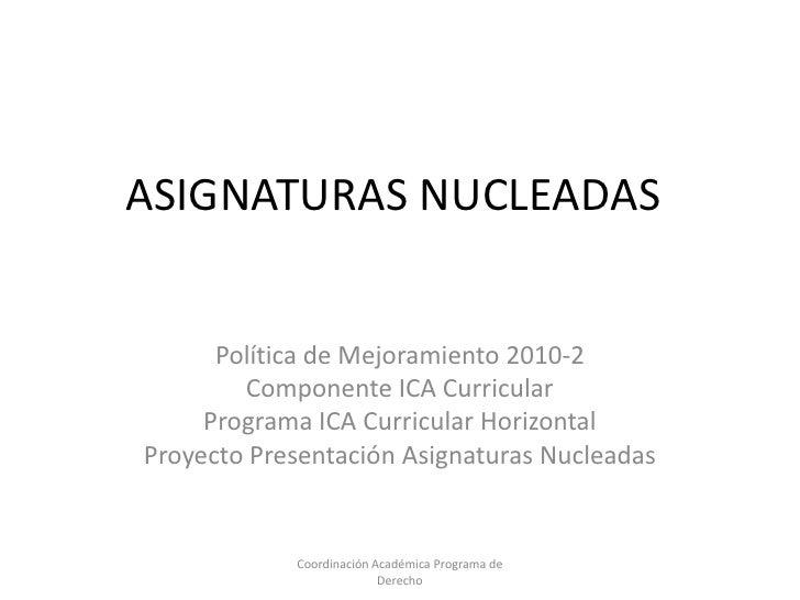 Asignaturas nucleadas
