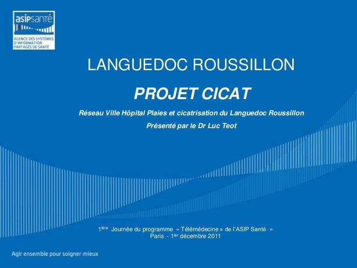 """2011-12-01 ASIP Santé Journée Télémedecine """"Avancement du projet Télémédecine en Languedoc Roussillon (volet 2)"""""""