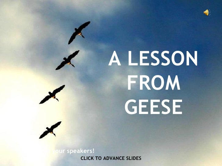A LESSON FROM GEESE CLICK TO ADVANCE SLIDES ♫  Turn on your speakers!