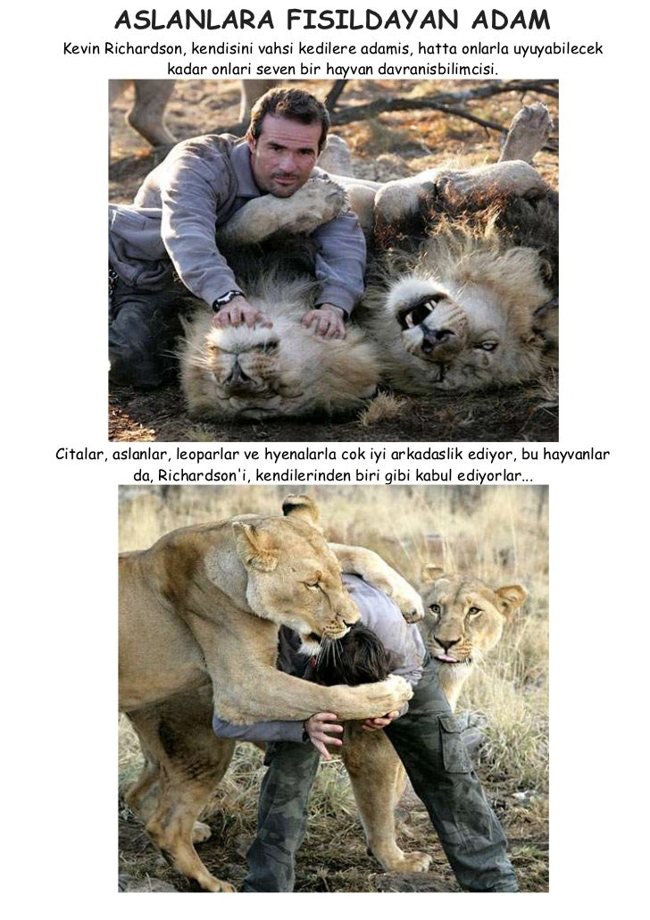 Aslanlara fisildayan adam