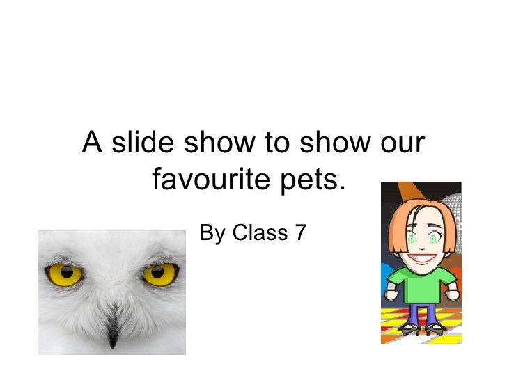 A slide show to show our favourite pets