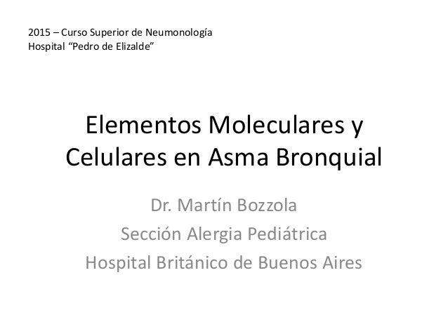 Elementos Moleculares y Celulares en Asma Bronquial Dr. Martín Bozzola Sección Alergia Pediátrica Hospital Británico de Bu...