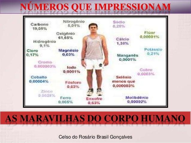 AS MARAVILHAS DO CORPO HUMANO Celso do Rosário Brasil Gonçalves
