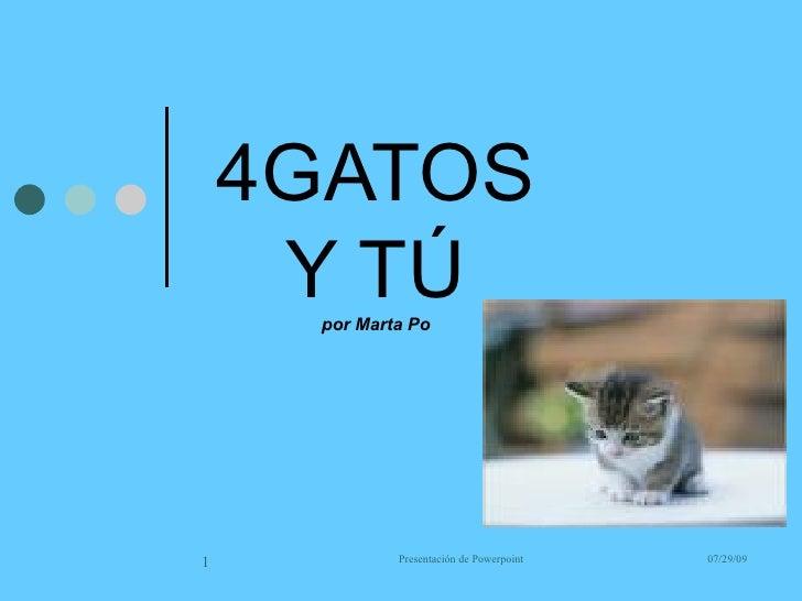 4GATOS Y TÚ por Marta Po