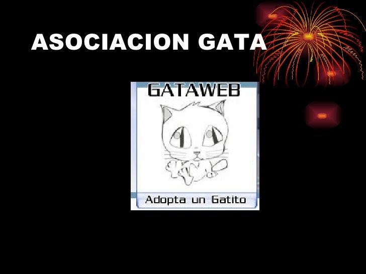 ASOCIACION GATA