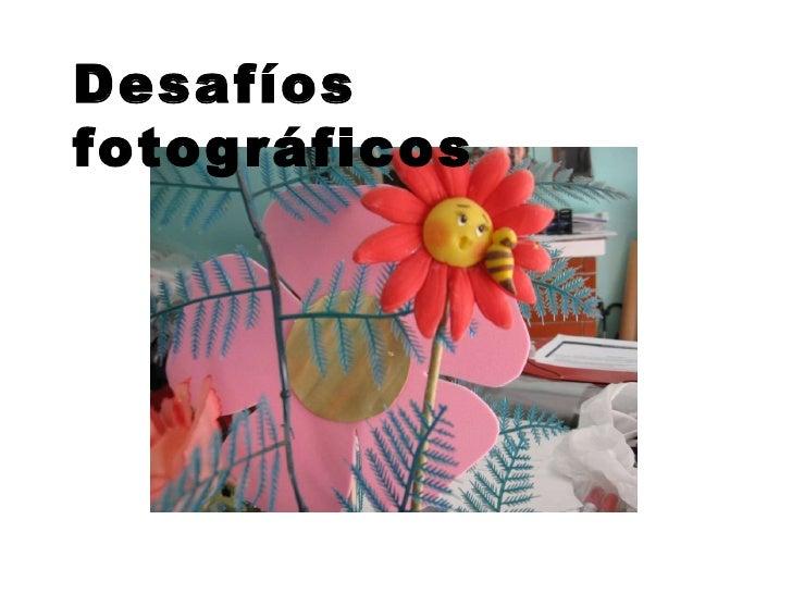Desafíos  fotográficos