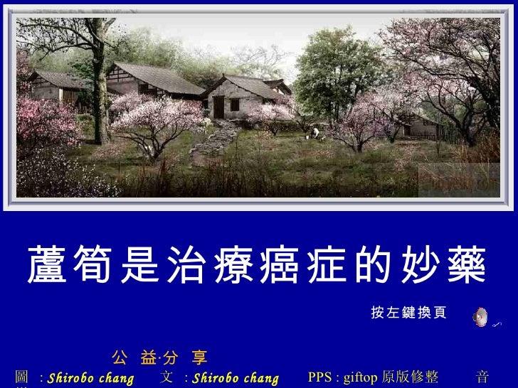 蘆筍是治療癌症的妙藥 按左鍵換頁 公  益‧分  享   圖  :  Shirobo chang   文  :  Shirobo chang   PPS : giftop 原版修整  音樂  :confluence