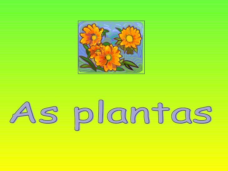 As partes de uma planta