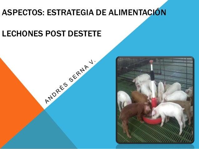 ASPECTOS: ESTRATEGIA DE ALIMENTACIÓNLECHONES POST DESTETE