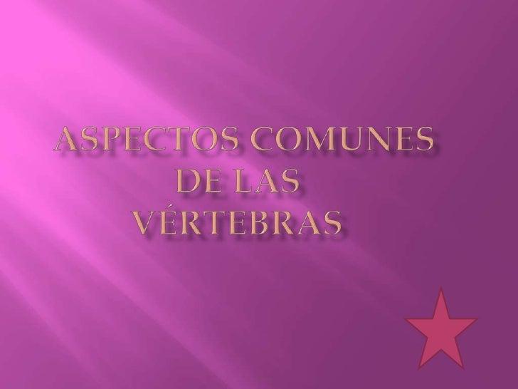 ASPECTOS COMUNESDE LAS             VÉRTEBRAS<br />