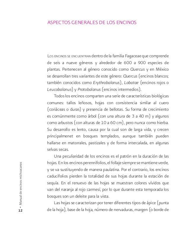 Aspectos generales de los encinos  Los encinos se encuentran dentro de la familia Fagaceae que comprende  de seis a nueve ...