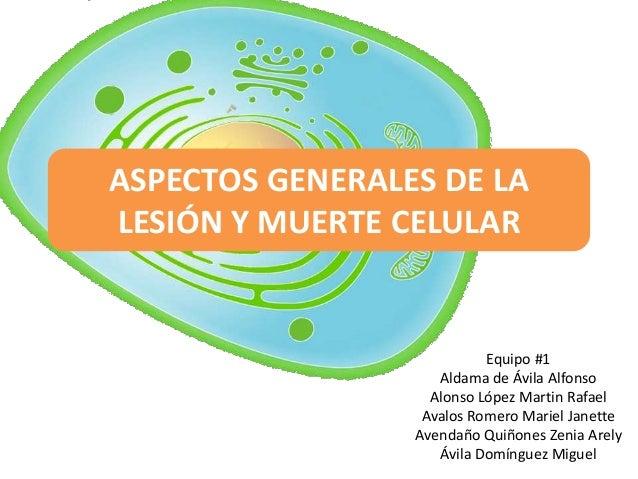 ASPECTOS GENERALES DE LALESIÓN Y MUERTE CELULAR                           Equipo #1                    Aldama de Ávila Alf...