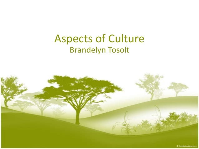 Aspects of Culture Brandelyn Tosolt