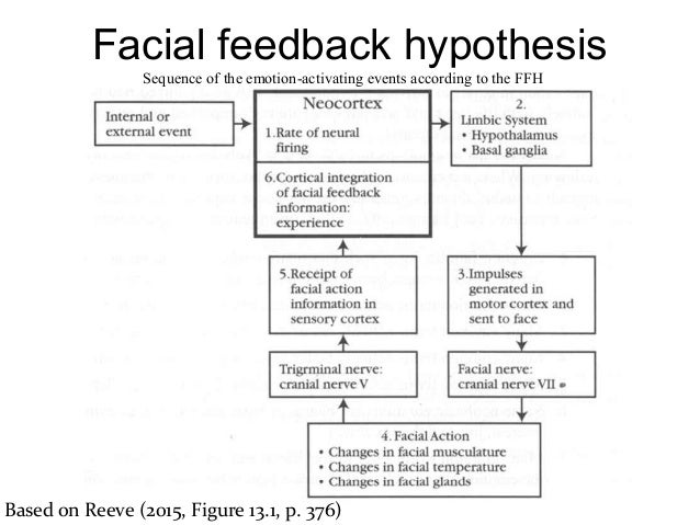 facial feedback theory By: mariam warsame facial feedback theory of emotion what is the facial feedback hypothesis facial feedback hypothesis is the idea that facial expressions can influence emotions as well as.