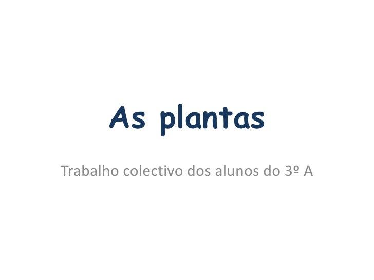 As plantas<br />Trabalho colectivo dos alunos do 3º A<br />