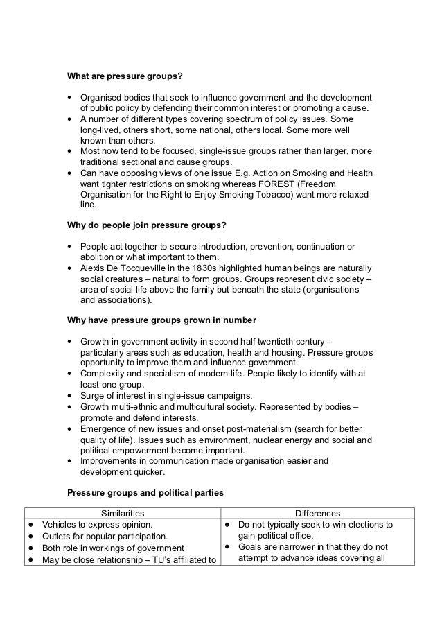 pressure groups essay