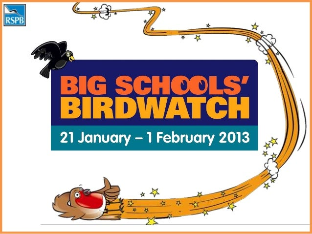 Every year the RSPBasks children across theUK to count the birds in  their school grounds
