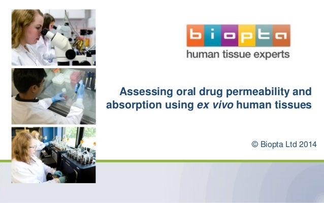 Assessing oral drug permeability and absorption using ex vivo human tissues  © Biopta Ltd 2014