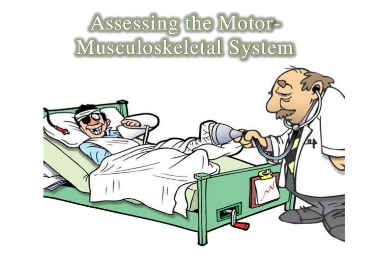 Assessing the Motor-Musculoskeletal System