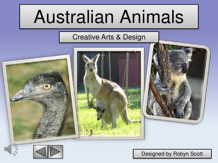 Australian Animals    Creative Arts & Design                        Designed by Robyn Scott