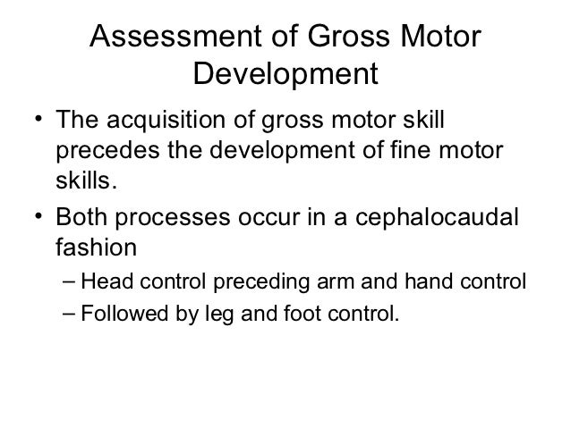motor development autobiography essay