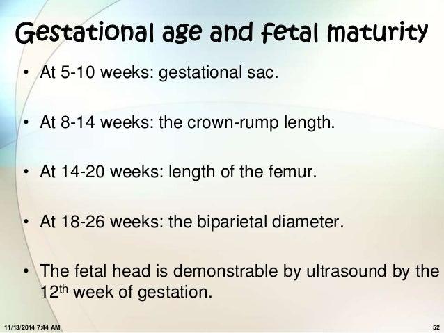 Fetal lung maturity test