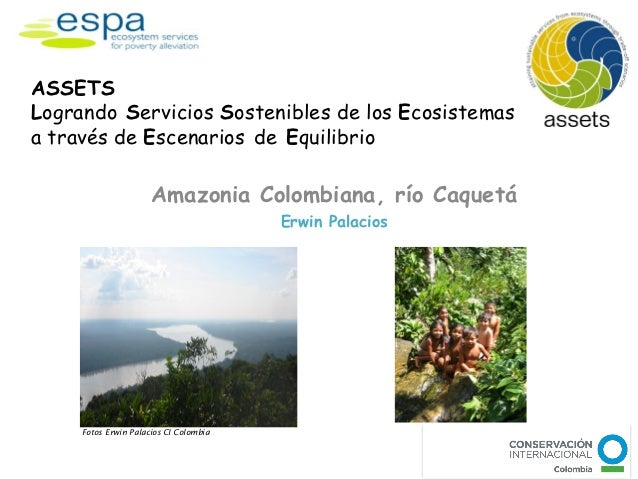 ASSETSLogrando Servicios Sostenibles de los Ecosistemasa través de Escenarios de Equilibrio                      Amazonia ...