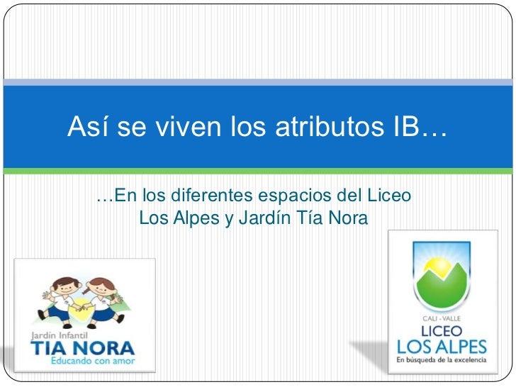 …En los diferentes espacios del Liceo Los Alpes y Jardín Tía Nora<br />Así se viven los atributos IB…<br />