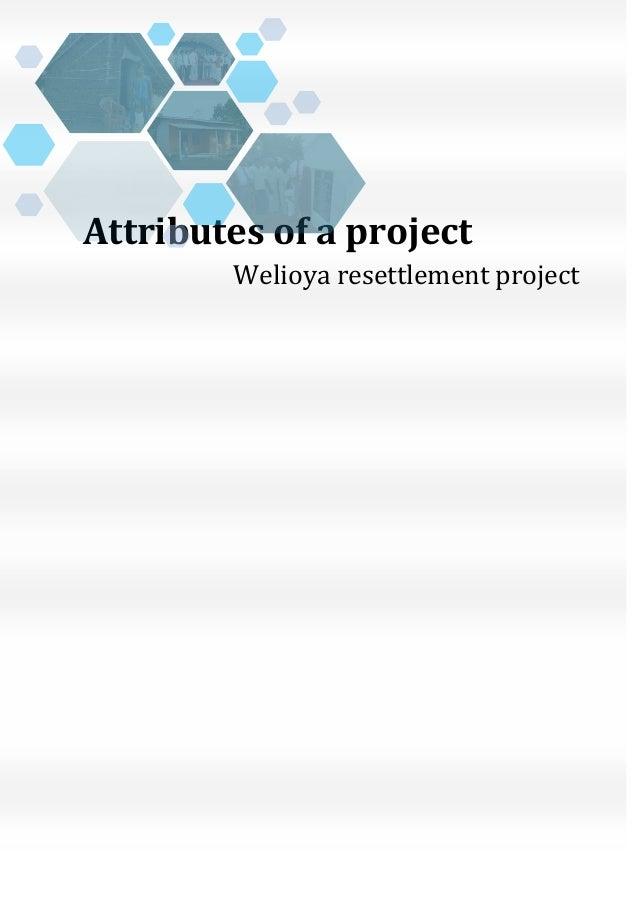 Attributes of a project-Sri Lankan case study
