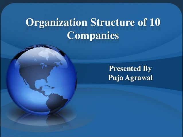 Organization Structure of 10 Companies Presented By Puja Agrawal