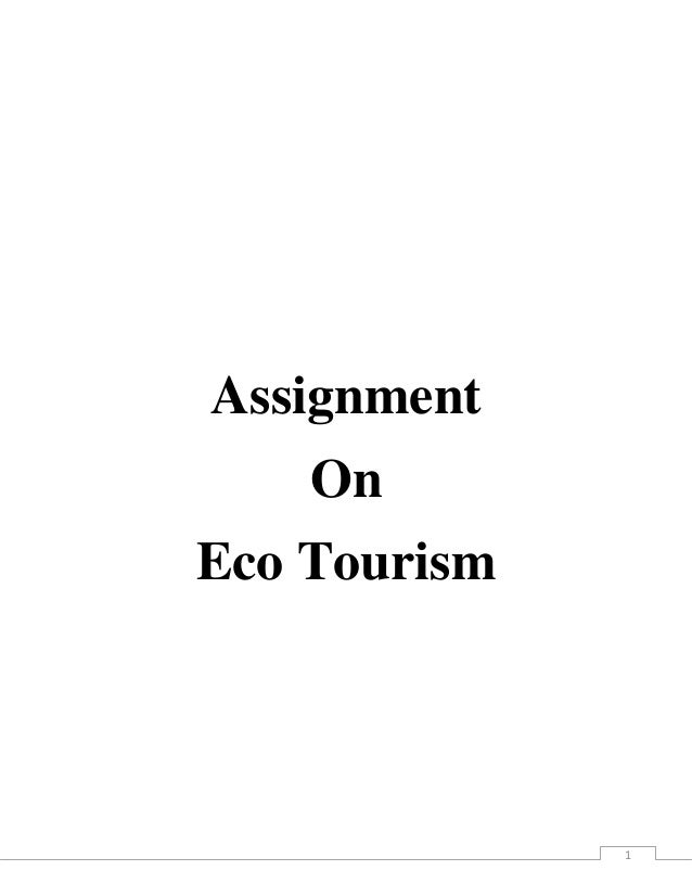 Assignment    OnEco Tourism              1