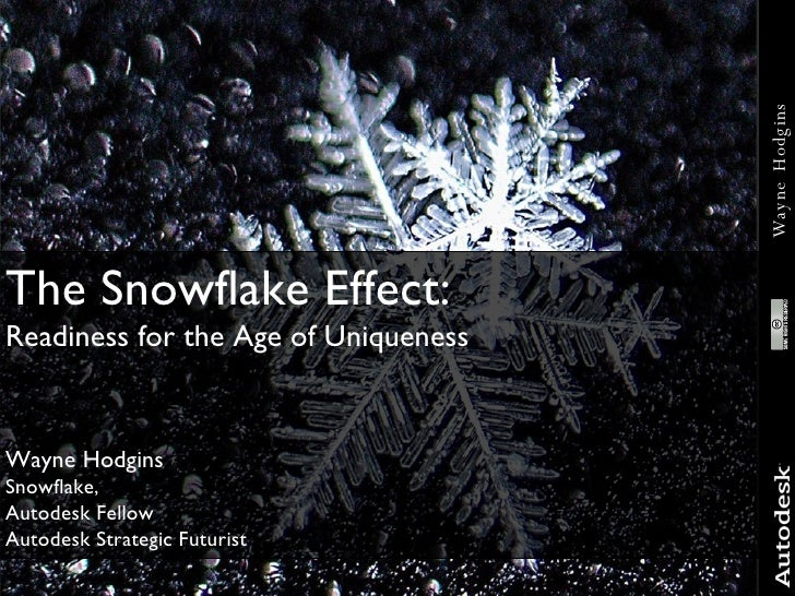 The Snowflake Effect:  Readiness for the Age of Uniqueness Wayne Hodgins Snowflake, Autodesk Fellow Autodesk Strategic Fut...