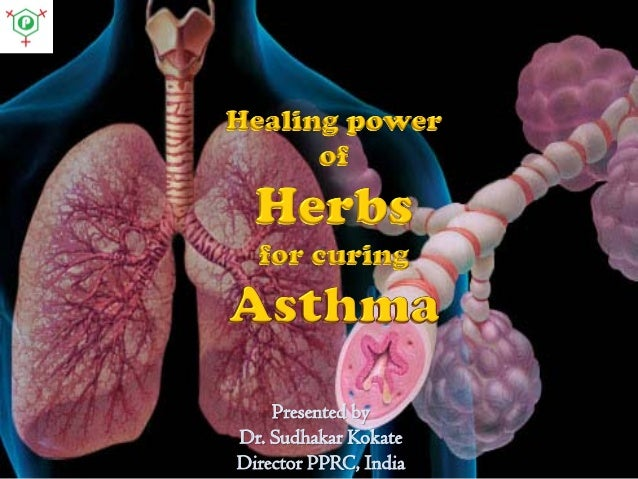 Healing power of Herbs for curing Asthma