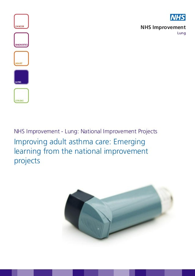 Improving adult asthma care: emerging learning from the national improvement projects