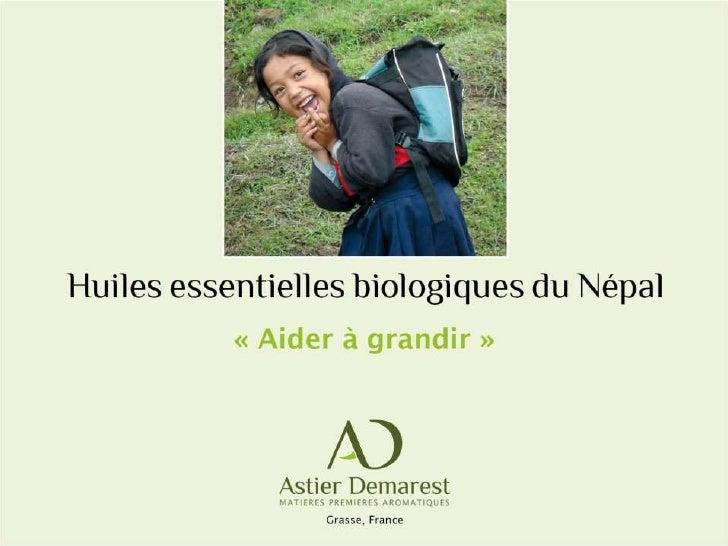 Astier Demarest : Filière huiles essentielles équitables - Népal