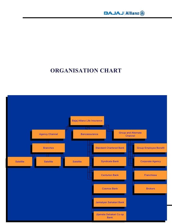 A Study On Customer Awareness Bajaj Allianz Project Report