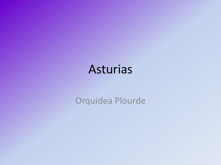 Asturias<br />OrquideaPlourde<br />