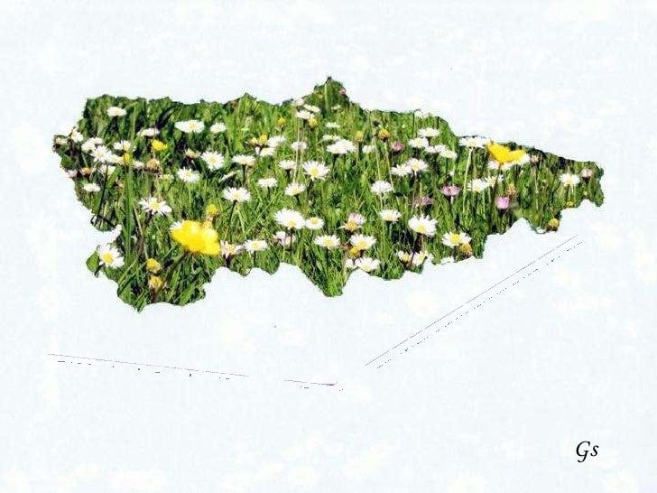 Asturias  en  primavera Gs