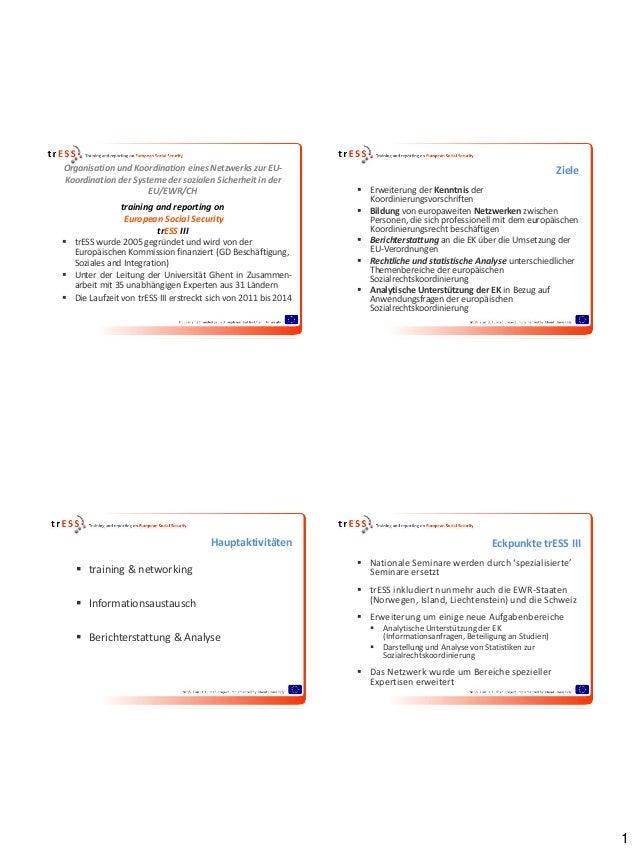 2011 - Organisation und Koordination eines Netzwerks zur EU-Koordination der Systeme der sozialen Sicherheit in der EU/EWR/CH