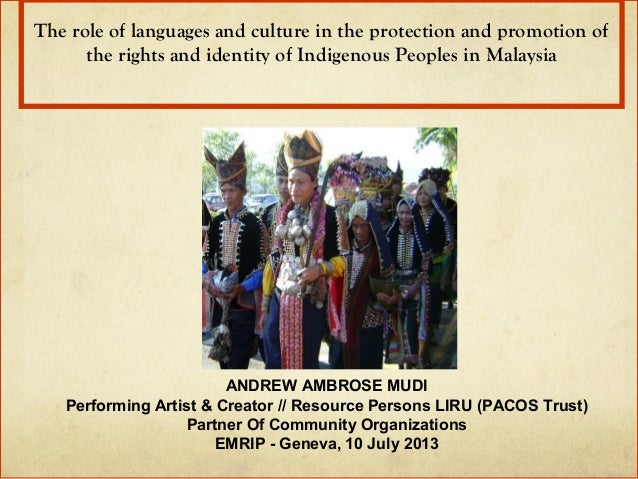 The role of languages and culture in the protection and promotion of  the rights and identity of Indigenous Peoples in Mal...
