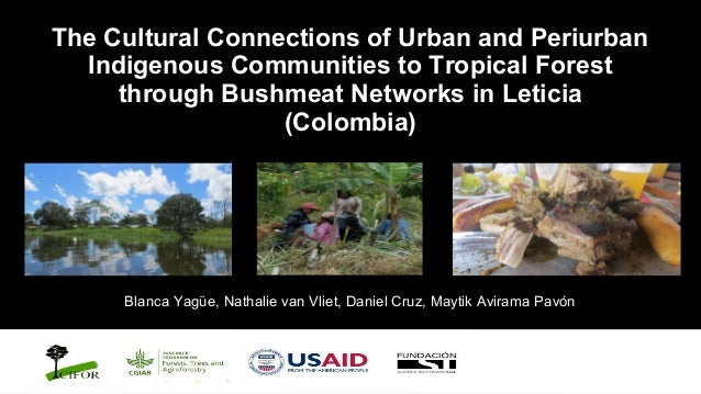 The Cultural Connections of Urban and Periurban Indigenous Communities to Tropical Forest through Bushmeat Networks in Leticia (Colombia)